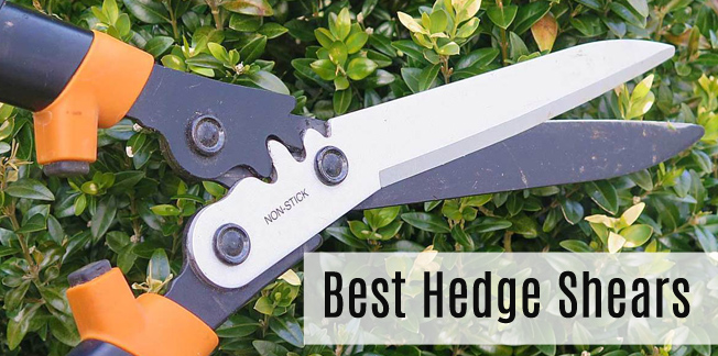 Best Hedge Shears in 2020 Which One Wins? Finds Out