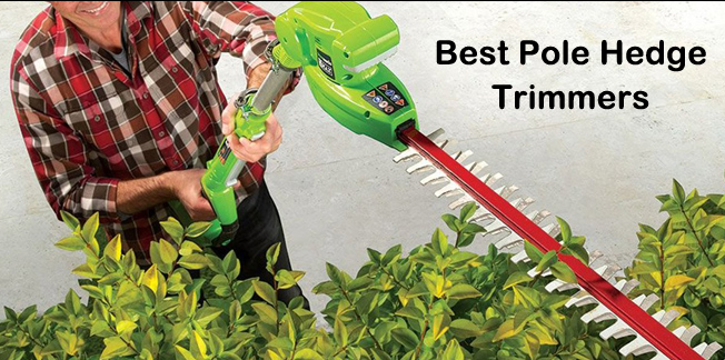 Best Pole Hedge Trimmer in 2020 Ultimate Guide With Expert's Suggestion