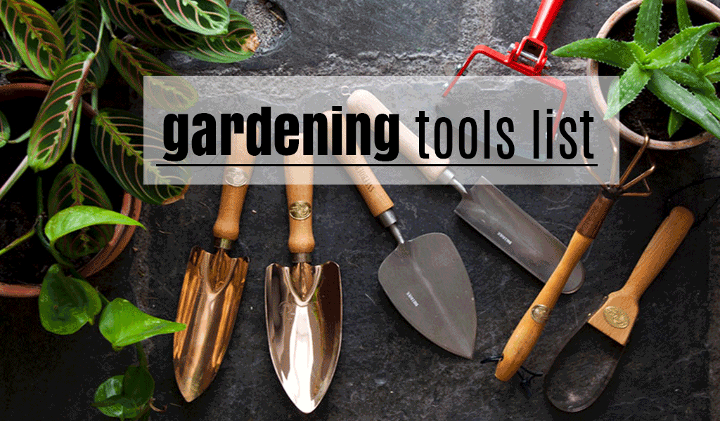 Essential Gardening Tools for a Beginner
