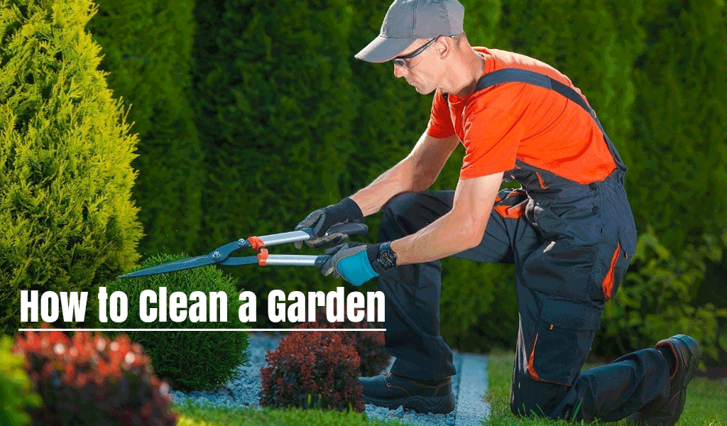 How to Clean a Garden